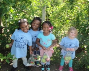 Kindergarten students apple picking